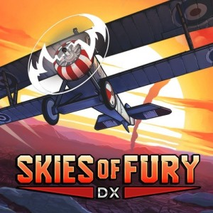 Cover Skies of Fury DX