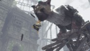 Immagine The Last Guardian PlayStation 4