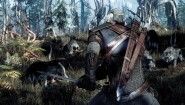 Immagine The Witcher 3: Wild Hunt PlayStation 4