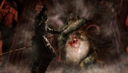 Immagine Dark Souls II PC Windows