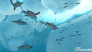 Immagine Endless Ocean 2: Adventures of the Deep Wii