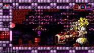 Immagine Axiom Verge PlayStation 4