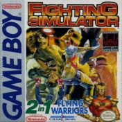 Cover Fighting Simulator: 2-in-1 Flying Warriors