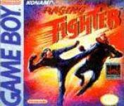 Cover Raging Fighter