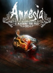 Cover Amnesia: A Machine for Pigs