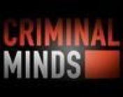Cover Criminal Minds