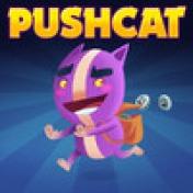 Cover Pushcat