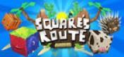 Cover Square's Route