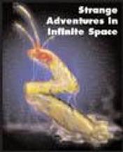 Cover Strange Adventures in Infinite Space