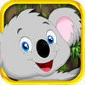 "Cover ""SKILLZ"" Blinky Timber Koala - Arcade Multiplayer Real Money Cash Tournaments"