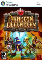 Cover Dungeon Defenders (PC)