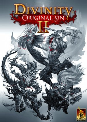 Cover Divinity: Original Sin II (PC)