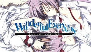 Cover Wonderful Everyday Down the Rabbit-Hole