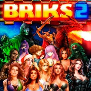Cover BRIKS 2