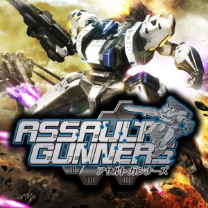 Cover Assault Gunners