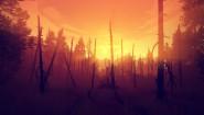 Immagine Firewatch Linux