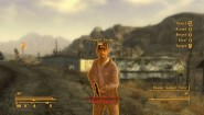 Immagine Fallout: New Vegas (PC)