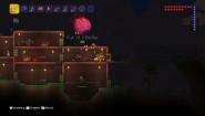 Immagine Terraria Wii U