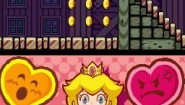Immagine Super Princess Peach (DS)