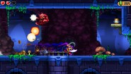 Immagine Shantae and the Pirate's Curse (PS4)