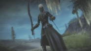 Immagine Guild Wars 2 (PC)