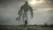 Immagine Shadow of the Colossus (PS4)