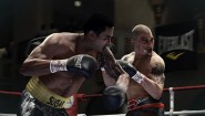Immagine Fight Night: Champion PlayStation 3