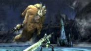 Immagine Immagine Monster Hunter Tri Wii