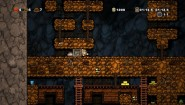Immagine Spelunky (PS4)
