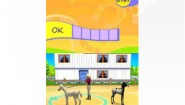 Immagine Petz: Horsez Farm Adventures DS