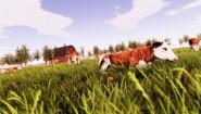 Immagine Real Farm (Nintendo Switch)