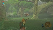 Immagine The Legend of Zelda: Breath of the Wild (Wii U)
