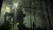Immagine Immagine Shadow of the Colossus PS4