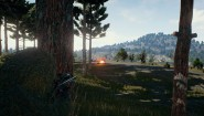 Immagine PLAYERUNKNOWN'S BATTLEGROUNDS (PC)