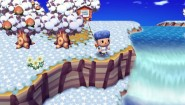 Immagine Animal Crossing: Let's Go to the City (Wii)