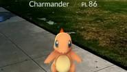 Immagine Pokémon GO (Android)