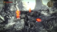 Immagine Immagine The Witcher 2: Assassins of Kings PC