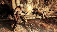 Immagine Immagine Dark Souls II PS3
