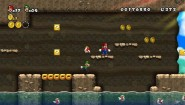 Immagine New Super Mario Bros. Wii (Wii)