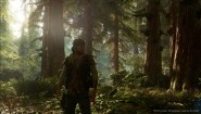 Immagine Days Gone (PS4)