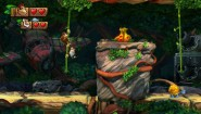 Immagine Donkey Kong Country: Tropical Freeze (Wii U)