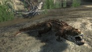 Immagine Cabela's Dangerous Hunts 2011 Wii