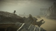 Immagine Shadow of the Colossus PlayStation 4