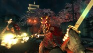 Immagine Shadow Warrior (PS4)